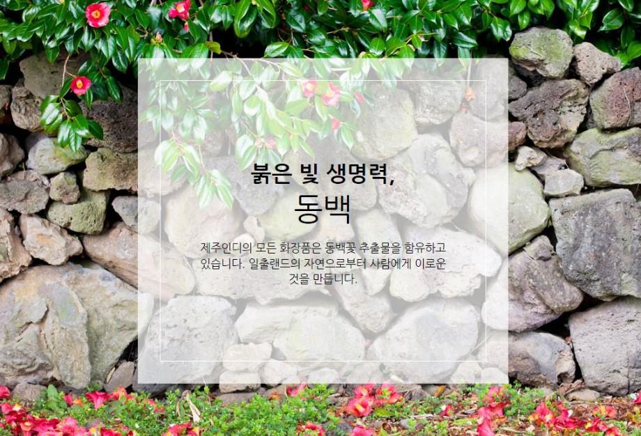 제주인디3.JPG